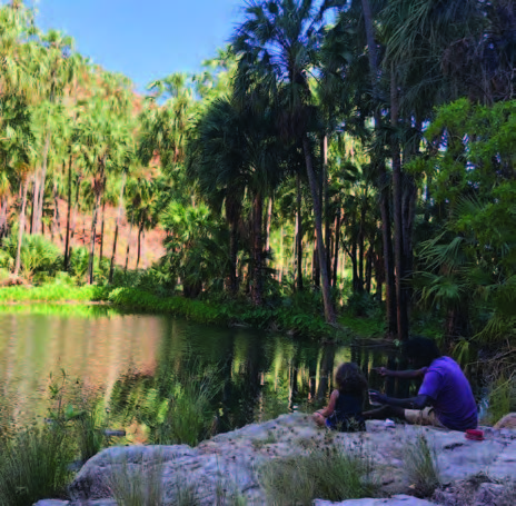Fishing at Palm Springs